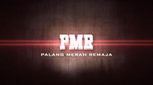 pmr-bro
